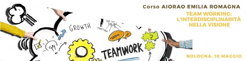 TEAM WORKING: L'INTERDISCIPLINARITA' NELLA VISIONE